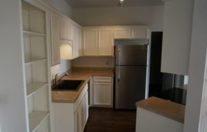 kitchen overview (dishwasher included but not visible)